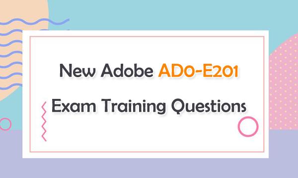 New Adobe AD0-E201 Exam Training Questions